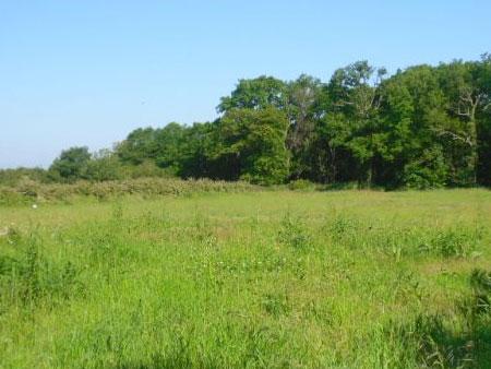 Acheter un terrain et construire soi-même sur Châteaudun